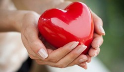 Пластиковое сердце в руках