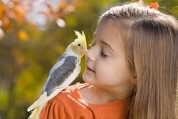 Девочка и попугай